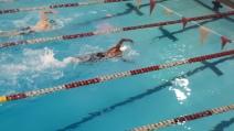swim 04