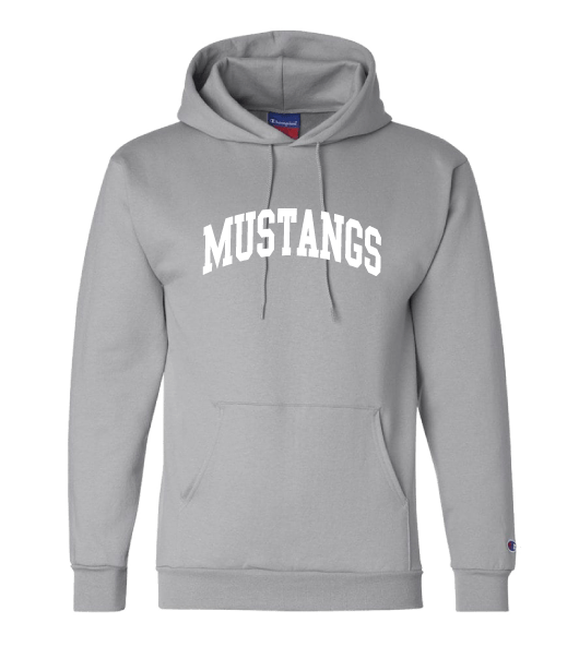 champion-hoodie-lt-grey
